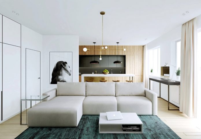 modern minimalist apartment designs