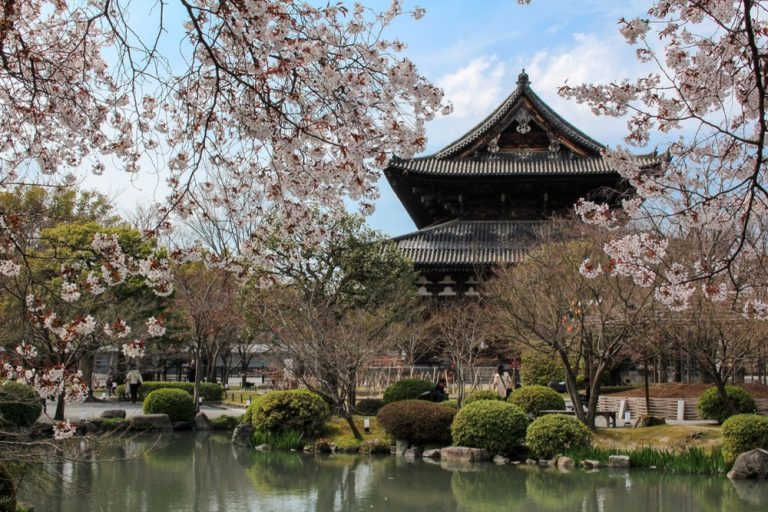 All Uniqueness about Japan – Interest Facts You can Find!