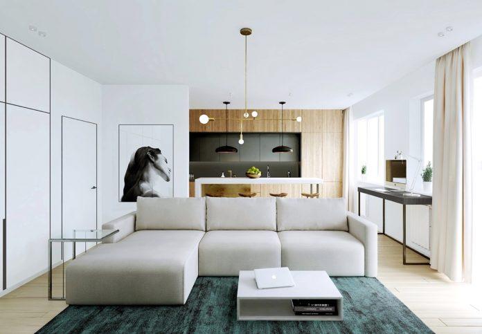 modern minimalist apartment designs