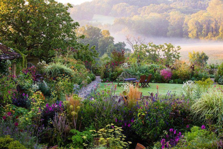 Exploring Backyard Landscape Design Ideas